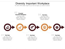 Diversity Important Workplace Ppt Powerpoint Presentation Icon Infographics Cpb