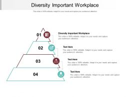 Diversity Important Workplace Ppt Powerpoint Presentation Outline Professional Cpb