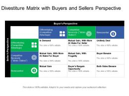 Divestiture Matrix With Buyers And Sellers Perspective