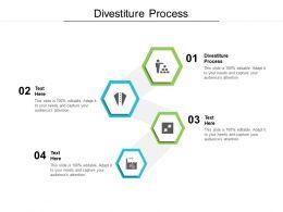 Divestiture Process Ppt Powerpoint Presentation Portfolio Elements Cpb