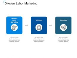 Division Labor Marketing Ppt Powerpoint Presentation Outline Shapes Cpb