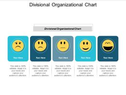 Divisional Organizational Chart Ppt Powerpoint Presentation Styles Example File Cpb