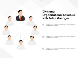Divisional Organizational Structure With Sales Manager