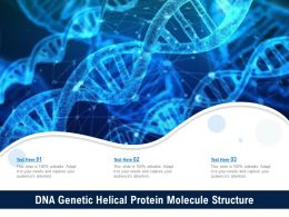 DNA Genetic Helical Protein Molecule Structure