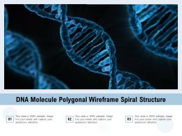 DNA Molecule Polygonal Wireframe Spiral Structure