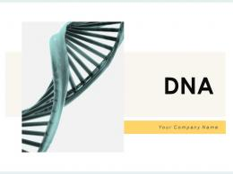 DNA Research Laboratory Parallel Isolation Operating Biotechnology Structure