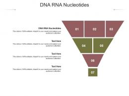 DNA RNA Nucleotides Ppt Powerpoint Presentation Gallery Layouts Cpb