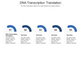 DNA Transcription Translation Ppt Powerpoint Presentation Layouts Templates Cpb