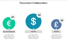 Document Collaboration Ppt Powerpoint Presentation Icon Sample Cpb