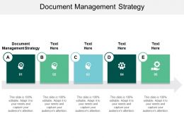 Document Management Strategy Ppt Powerpoint Presentation Infographic Template Microsoft Cpb