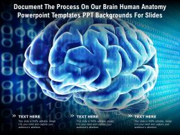 Document The Process On Our Brain Human Anatomy Templates Ppt Backgrounds For Slides