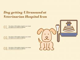 Dog Getting Ultrasound At Veterinarian Hospital Icon