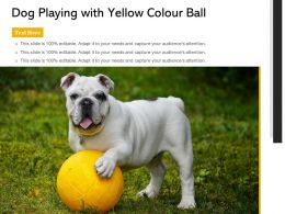 Dog Playing With Yellow Colour Ball