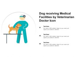 Dog Receiving Medical Facilities By Veterinarian Doctor Icon