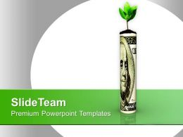 Dollar Bill With Flower On White Background Powerpoint Templates PPT Themes And Graphics 0213