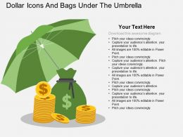 Dollar Coins And Bags Under The Umbrella Flat Powerpoint Desgin