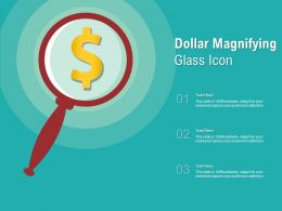 Dollar Magnifying Glass Icon