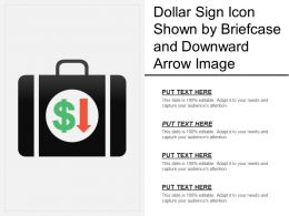 Dollar Sign Icon Shown By Briefcase And Downward Arrow Image