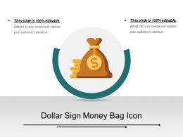 Dollar Sign Money Bag Icon Ppt Slide Examples