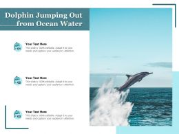 Dolphin Jumping Out From Ocean Water