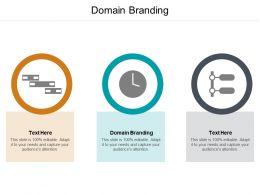 Domain Branding Ppt Powerpoint Presentation Model Portrait Cpb