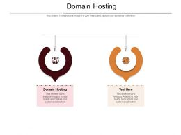 Domain Hosting Ppt Powerpoint Presentation Model Show Cpb