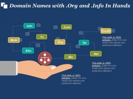 Domain Names With Org And Info In Hands