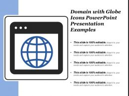 Domain With Globe Icons Powerpoint Presentation Examples