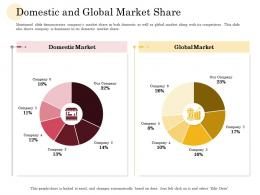 Domestic And Global Market Share Manufacturing Company Performance Analysis Ppt Professional