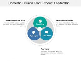 Domestic Division Plant Product Leadership Improve Business Performance