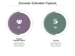 Domestic Estimated Payback Ppt Powerpoint Presentation Portfolio Introduction Cpb