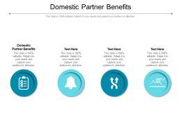 Domestic Partner Benefits Ppt Powerpoint Presentation Slides Portfolio Cpb