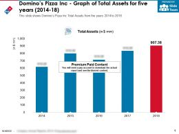 Dominos Pizza Inc Graph Of Total Assets For Five Years 2014-18