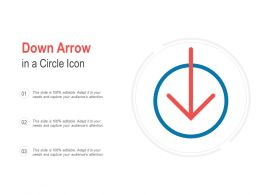 Down Arrow In A Circle Icon
