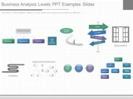 Download Business Analysis Levels Ppt Examples Slides