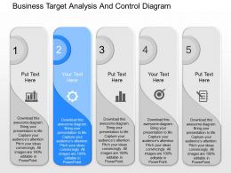 download_business_target_analysis_and_control_diagram_powerpoint_template_Slide02
