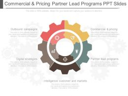 Download Commercial And Pricing Partner Lead Programs Ppt Slides