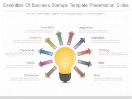 Download Essentials Of Business Startups Template Presentation Slides