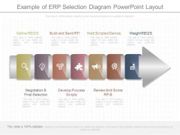Download Example Of Erp Selection Diagram Powerpoint Layout