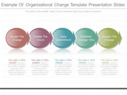 Download Example Of Organizational Change Template Presentation Slides