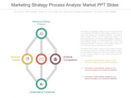 Download Marketing Strategy Process Analyze Market Ppt Slides
