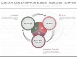 Download Measuring Sales Effectiveness Diagram Presentation Powerpoint
