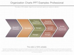 Download Organization Charts Ppt Examples Professional