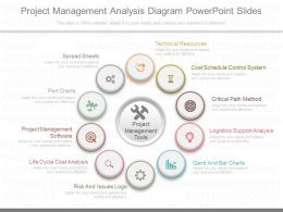 Download Project Management Analysis Diagram Powerpoint Slides