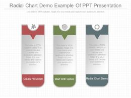 Download Radial Chart Demo Example Of Ppt Presentation