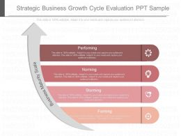 Download Strategic Business Growth Cycle Evaluation Ppt Sample