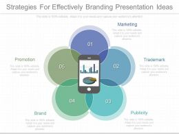 download_strategies_for_effectively_branding_presentation_ideas_Slide01
