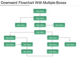 Downward Flowchart With Multiple Boxes