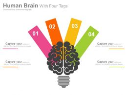 dr Human Brain With Four Tags Flat Powerpoint Design