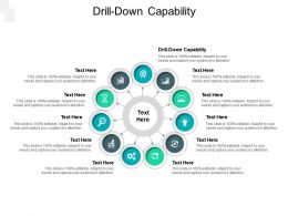 Drill Down Capability Ppt Powerpoint Presentation File Designs Cpb